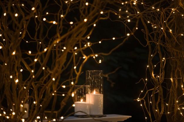 lyskæder-i-haven